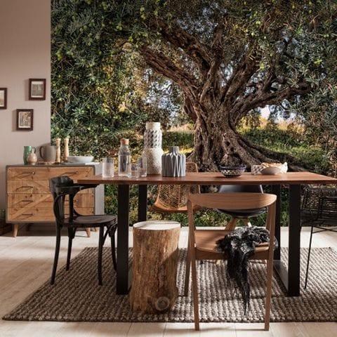 ドイツ製 輸入壁紙【8-531】Olive Tree